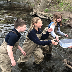 Three students in a river releasing salmon